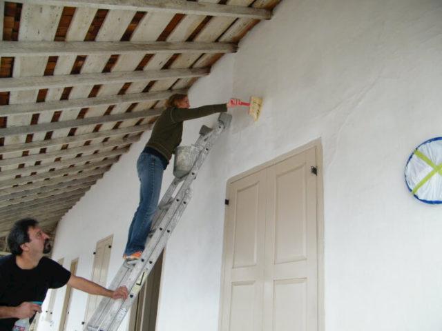 Защита стен от грибка