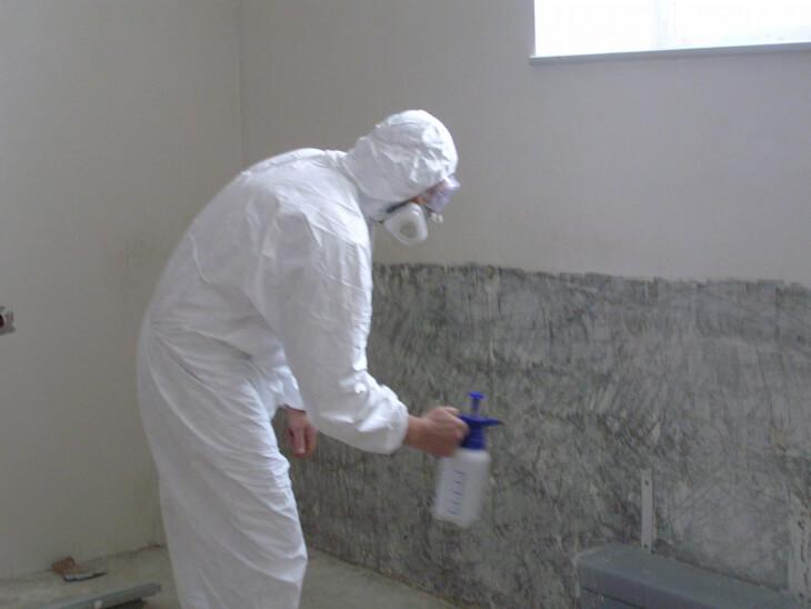 Обработываем антигрибковым покрытием стену