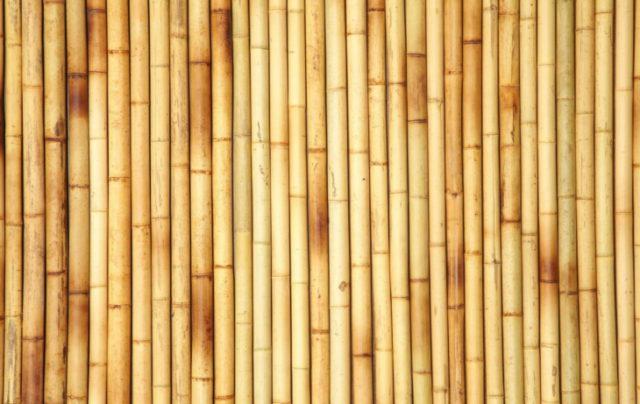 Бамбуковые панели