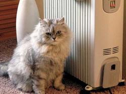 Кот греется у обогревателя