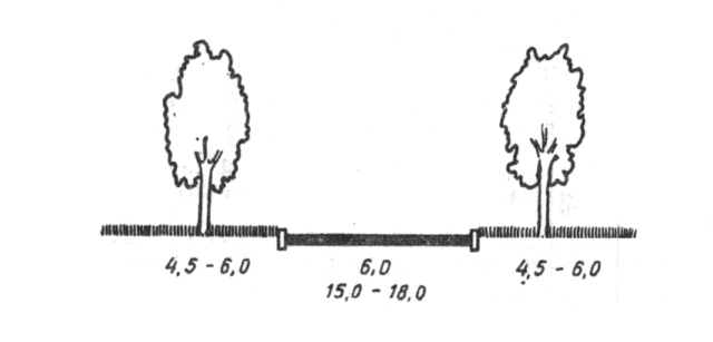Сажать деревья необходимо от соседского забора на расстоянии: высоких деревьев – 4 м, кустарников – 1 м.