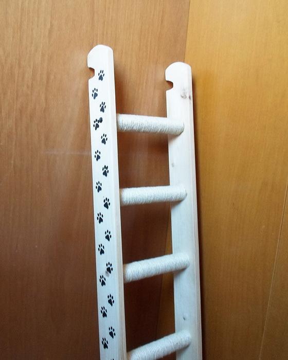 Готовая лестница для кошки