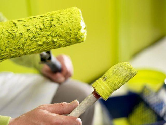 Отделка стен вододисперсионной краской