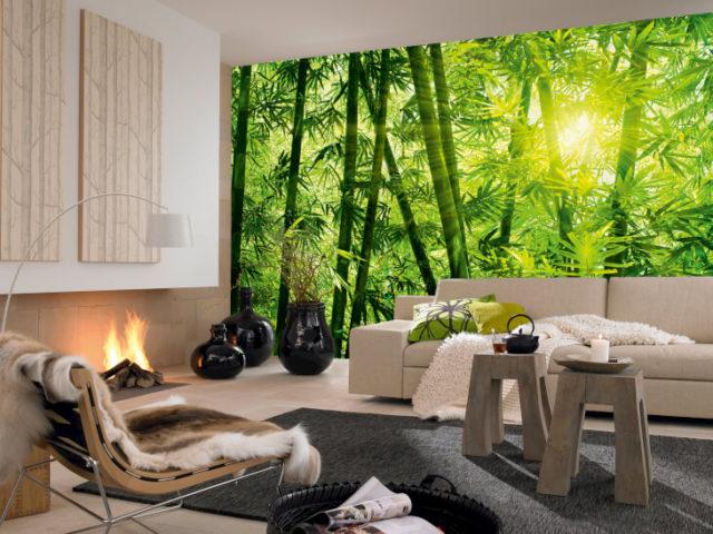 Обои с деревьями на стену в квартире